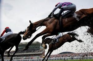 horse-race1